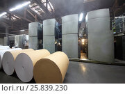 Купить «Rolls of paper and Roll 48-way offset printing machines in tipography», фото № 25839230, снято 29 ноября 2014 г. (c) Losevsky Pavel / Фотобанк Лори