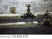 Купить «Thermally insulated pipes with gate valves in the building basement», фото № 25839670, снято 27 мая 2015 г. (c) Losevsky Pavel / Фотобанк Лори