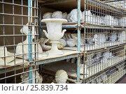 Купить «Storage shelves with gypsum models at sculpture workhouse», фото № 25839734, снято 28 мая 2015 г. (c) Losevsky Pavel / Фотобанк Лори