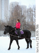 Купить «Portrait of girl in winter clothes on a black horse at the equestrian site in front of trees and buildings», фото № 25839786, снято 5 января 2015 г. (c) Losevsky Pavel / Фотобанк Лори