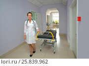 Купить «Smiling medical woman doctor with bed wheelchair in multidisciplinary Clinic», фото № 25839962, снято 31 августа 2015 г. (c) Losevsky Pavel / Фотобанк Лори