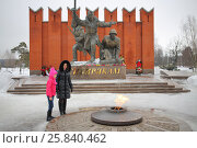 Купить «MOSCOW - FEB 23, 2015: Mother and daughter (model release) are near the eternal flame at the memorial complex of Siberian soldiers», фото № 25840462, снято 23 февраля 2015 г. (c) Losevsky Pavel / Фотобанк Лори