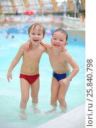 Купить «Two happy little boys embraced in a pool at the waterpark», фото № 25840798, снято 28 февраля 2015 г. (c) Losevsky Pavel / Фотобанк Лори