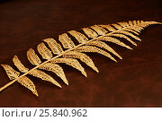 Купить «Golden christmas decoration in shape of fern branch on leather surface», фото № 25840962, снято 11 января 2015 г. (c) Losevsky Pavel / Фотобанк Лори