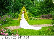 Купить «Full portrait of beautiful woman in white long dress in summer park», фото № 25841154, снято 16 июля 2015 г. (c) Losevsky Pavel / Фотобанк Лори