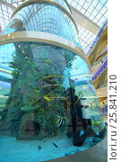 Купить «MOSCOW - DEC 05, 2014:  The base of the aquarium with a diver inside in the shopping and entertainment complex Aviapark», фото № 25841210, снято 5 декабря 2014 г. (c) Losevsky Pavel / Фотобанк Лори