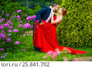 Купить «Man in suit and young woman in red dress poses in garden with flowers and bushes», фото № 25841702, снято 19 июля 2015 г. (c) Losevsky Pavel / Фотобанк Лори