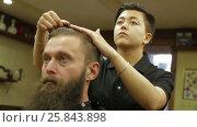 Купить «Female Barber combs out hair of client», видеоролик № 25843898, снято 10 ноября 2016 г. (c) Илья Насакин / Фотобанк Лори