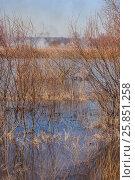 Паводок на реке Нерль во Владимирской области, горит трава. Стоковое фото, фотограф Kroshanya / Фотобанк Лори