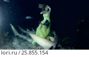 Купить «Young beautiful woman in yellow dress posing underwater with Tawny nurse sharks (Nebrius ferrugineus), night shooting, Indian Ocean, Maldives», видеоролик № 25855154, снято 27 марта 2017 г. (c) Некрасов Андрей / Фотобанк Лори