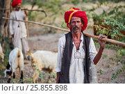 Купить «India, Rajasthan, Meda village around Jodhpur, Rabari ethnic group, shepherd.», фото № 25855898, снято 22 января 2017 г. (c) age Fotostock / Фотобанк Лори