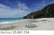 Купить «african island beach in indian ocean», видеоролик № 25861154, снято 12 февраля 2017 г. (c) Syda Productions / Фотобанк Лори