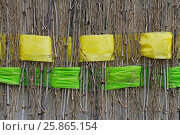 Background of twigs with interwoven wide yellow and green ribbons of felt. Стоковое фото, фотограф Юлия Олейник / Фотобанк Лори