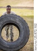 Купить «Determined military soldiers exercising with tyre», фото № 25872102, снято 24 ноября 2016 г. (c) Wavebreak Media / Фотобанк Лори