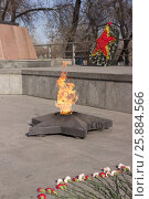 Купить «Цветы возле вечного огня в память погибшим солдатам», фото № 25884566, снято 29 марта 2017 г. (c) ok_fotoday / Фотобанк Лори
