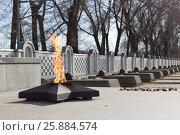 Купить «Вечный огонь. Никто не забыт, ничто не забыто», фото № 25884574, снято 29 марта 2017 г. (c) ok_fotoday / Фотобанк Лори