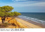 Купить «Португалия. Алгарве. Вид на песчаные пляжи Фалезии», фото № 25884854, снято 25 сентября 2012 г. (c) Виктория Катьянова / Фотобанк Лори