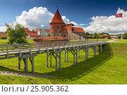 Купить «Kaunas Castle, built during the mid-14th century, in the Gothic style, Kaunas, Lithuania», фото № 25905362, снято 21 августа 2019 г. (c) BE&W Photo / Фотобанк Лори