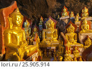Купить «These caves are Buddhist shrines where thousands of Buddha images have been consecrated for worship over the centuries in Pindaya, Myanmar», фото № 25905914, снято 17 декабря 2018 г. (c) BE&W Photo / Фотобанк Лори