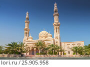 Купить «Mosque in Dubai, United Arab Emirates», фото № 25905958, снято 19 ноября 2018 г. (c) BE&W Photo / Фотобанк Лори