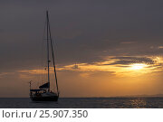 Купить «Yacht and Sunset, Kho Chang Thailand», фото № 25907350, снято 18 июня 2019 г. (c) BE&W Photo / Фотобанк Лори