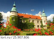 Купить «Palace in Baranow Sandomierski, Poland, often called little Wawel», фото № 25907806, снято 21 октября 2018 г. (c) BE&W Photo / Фотобанк Лори