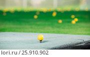 Купить «Balls scattered around course after game», фото № 25910902, снято 20 августа 2018 г. (c) Яков Филимонов / Фотобанк Лори