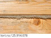 Утепление стены из бруса джутом. Стоковое фото, фотограф Юлия Мальцева / Фотобанк Лори