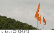 Купить «Set of flags of Vietnam against the backdrop of the mountain», видеоролик № 25924842, снято 27 марта 2017 г. (c) Mikhail Davidovich / Фотобанк Лори