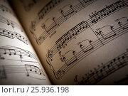 Купить «Open large music book close up», фото № 25936198, снято 8 апреля 2017 г. (c) Александр Калугин / Фотобанк Лори