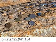 Купить «Монеты оставленные у буддийской ступы Просветления на острове Огой, озеро Байкал», фото № 25941154, снято 12 марта 2017 г. (c) Илья Бесхлебный / Фотобанк Лори