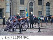 Купить «Королевский гвардеец со знаменем у старинного артиллерийского орудия. Церемония развода караула у королевского дворца. Стокгольм, Швеция», фото № 25961862, снято 29 августа 2016 г. (c) Виктор Карасев / Фотобанк Лори