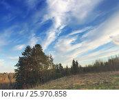Купить «Pine hill on a background of blue sky and a spring field with a last year grass», фото № 25970858, снято 2 мая 2015 г. (c) Куликов Константин / Фотобанк Лори