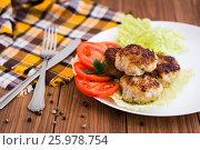 Жареные котлеты и овощи на тарелке. Стоковое фото, фотограф Елена Руй / Фотобанк Лори