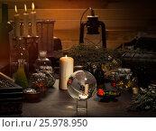 Купить «Mystical still-life. Magic ball, dry herbs, all for magical rituals. A lot of items. Candles», фото № 25978950, снято 22 января 2018 г. (c) Ирина Козорог / Фотобанк Лори