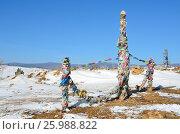 Купить «Тажеранская степь. Сэргэ - ритуальный столб бурят зимой на фоне синего неба», фото № 25988822, снято 13 ноября 2019 г. (c) Овчинникова Ирина / Фотобанк Лори