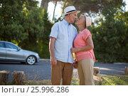 Купить «Senior couple romancing at roadside», фото № 25996286, снято 3 февраля 2017 г. (c) Wavebreak Media / Фотобанк Лори