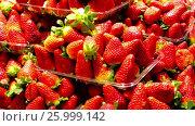 Купить «red strawberry on white», видеоролик № 25999142, снято 22 марта 2017 г. (c) Яков Филимонов / Фотобанк Лори