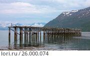 Купить «Beautiful Nature Norway gulls on the old pier», видеоролик № 26000074, снято 29 марта 2017 г. (c) Андрей Армягов / Фотобанк Лори