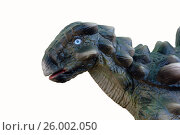 Купить «Анкилозавр», фото № 26002050, снято 12 июня 2015 г. (c) Акоп Васильян / Фотобанк Лори