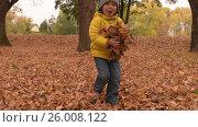 Купить «Happy playful kid throws autumn leaves in park», видеоролик № 26008122, снято 5 апреля 2017 г. (c) Pavel Biryukov / Фотобанк Лори