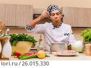 Купить «Young chef working in the kitchen», фото № 26015330, снято 18 ноября 2016 г. (c) Elnur / Фотобанк Лори
