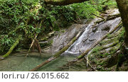 Купить «Waterfall in summer forest of Caucasus Mountains», видеоролик № 26015662, снято 4 апреля 2017 г. (c) Михаил Коханчиков / Фотобанк Лори