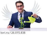 Купить «Angel investor growing future profits isolated on white», фото № 26015838, снято 20 августа 2018 г. (c) Elnur / Фотобанк Лори