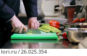 Купить «hands of male chef cook chopping celery in kitchen», видеоролик № 26025354, снято 17 июля 2019 г. (c) Syda Productions / Фотобанк Лори