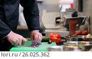 Купить «hands of male chef cook chopping onion in kitchen», видеоролик № 26025362, снято 2 июня 2020 г. (c) Syda Productions / Фотобанк Лори