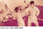 Купить «Pair of boys practicing new karate moves», фото № 26046842, снято 25 марта 2017 г. (c) Яков Филимонов / Фотобанк Лори