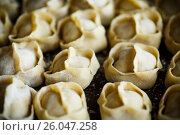 Купить «traditional raw manti with meat inside», фото № 26047258, снято 20 апреля 2017 г. (c) Peredniankina / Фотобанк Лори