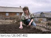 Купить «Женщина сеет семена на грядку на фоне дома», фото № 26047402, снято 24 апреля 2013 г. (c) Светлана Попова / Фотобанк Лори