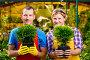 Professional gardeners team with seedlings in the greenhouse, фото № 26054378, снято 15 июля 2016 г. (c) Константин Лабунский / Фотобанк Лори